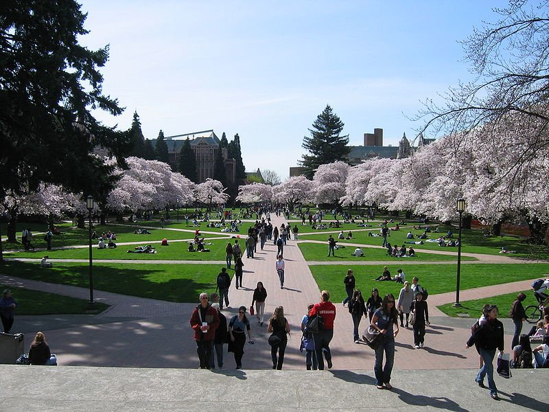 U of W quad in spring