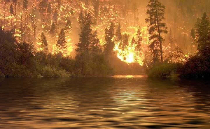 Forest_Fire_Beyond_Lake
