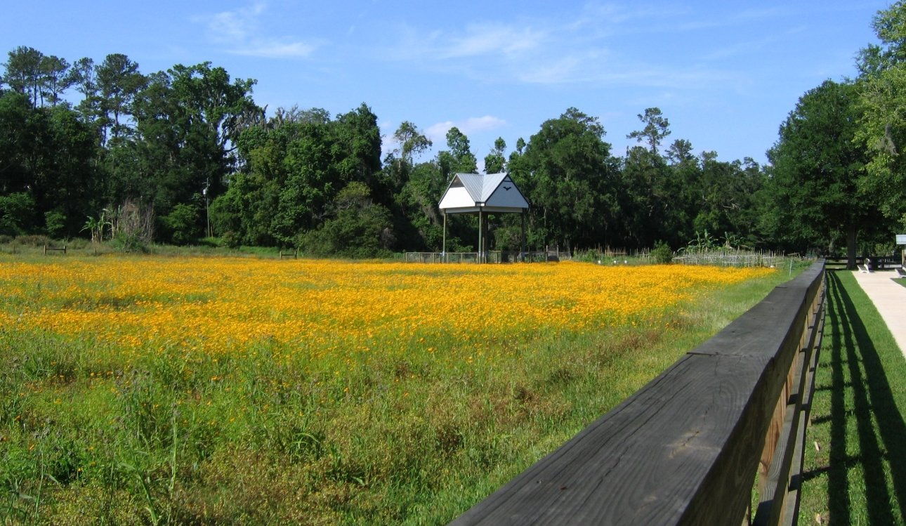 bat house in field
